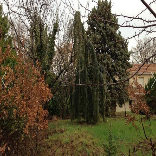 Offres de vente Villa Castanet-Tolosan 31320